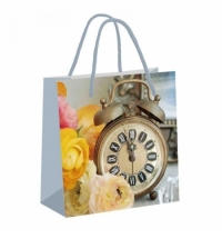 Пакет подарочный Pioneer Время расцвета 20x20см, ламинированный