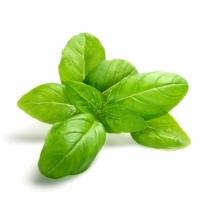 Базилик Зеленьторг зеленый, 50г